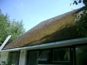 Dachunterhalt Aschwanden AG Nänikon Uster Steildach Dachservice Service Unterhalt Hanspeter Sahli Dach undicht kaputt verstopft Dachdecker