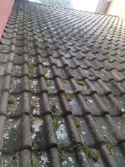 Aschwanden AG Nänikon Uster Moos Dachunterhalt Rückstau Kapillarwirkung Dachziegel Unterhalt Service Dachservice Reparatur Hanspeter Sahli